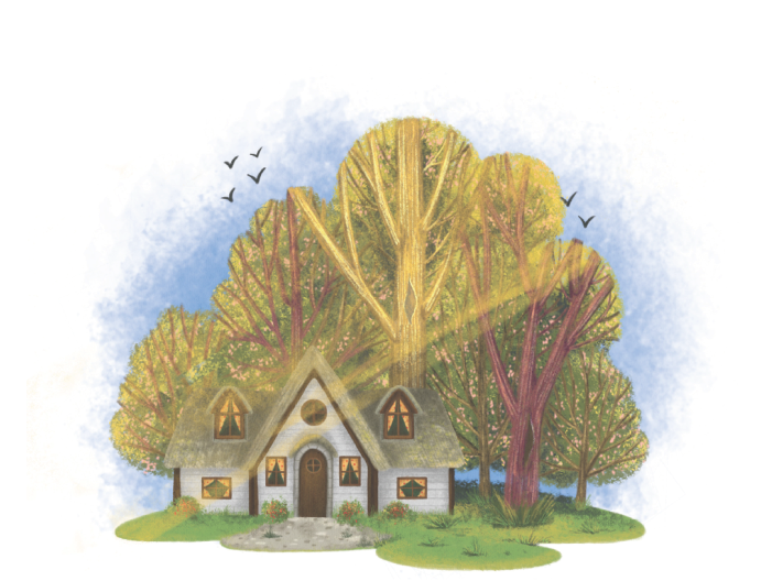 house in the forest illustration for love rays book